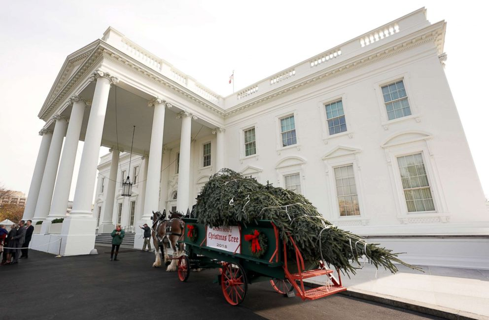 PHOTO: The official White House Christmas tree arrives at the White House, Nov. 19, 2018.